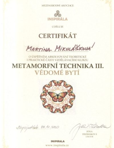 Metamorfní-technika-III certifikát